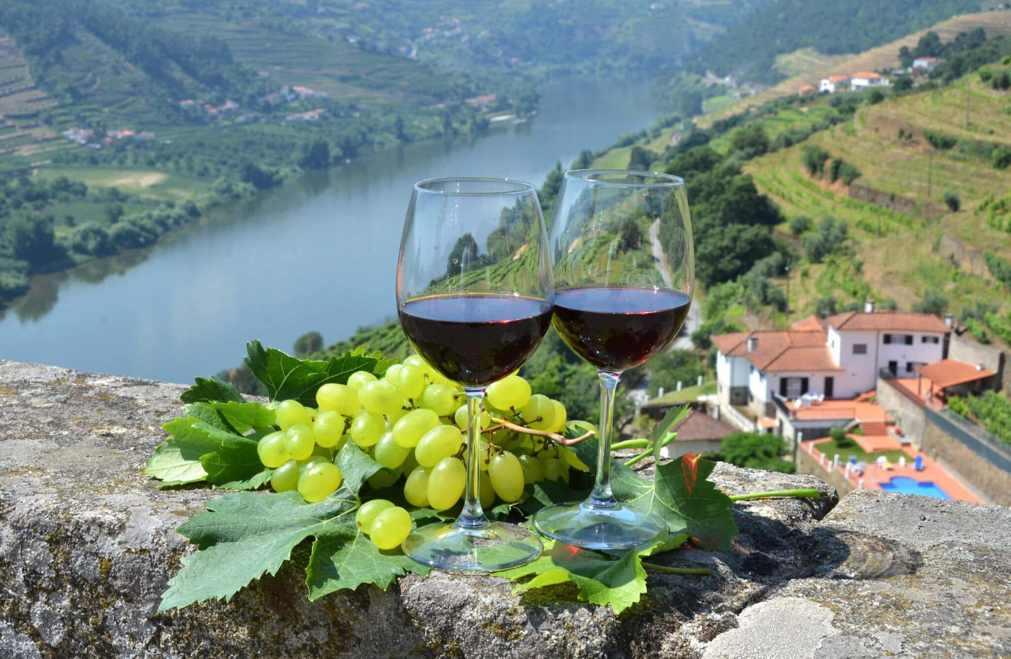 Wine glasses against vineyards in Douro Valley, Portugal