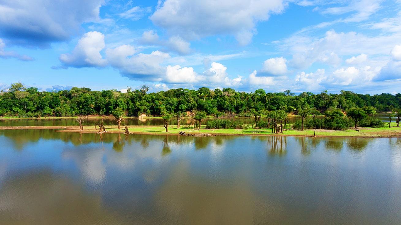Amazon River close to Manaus