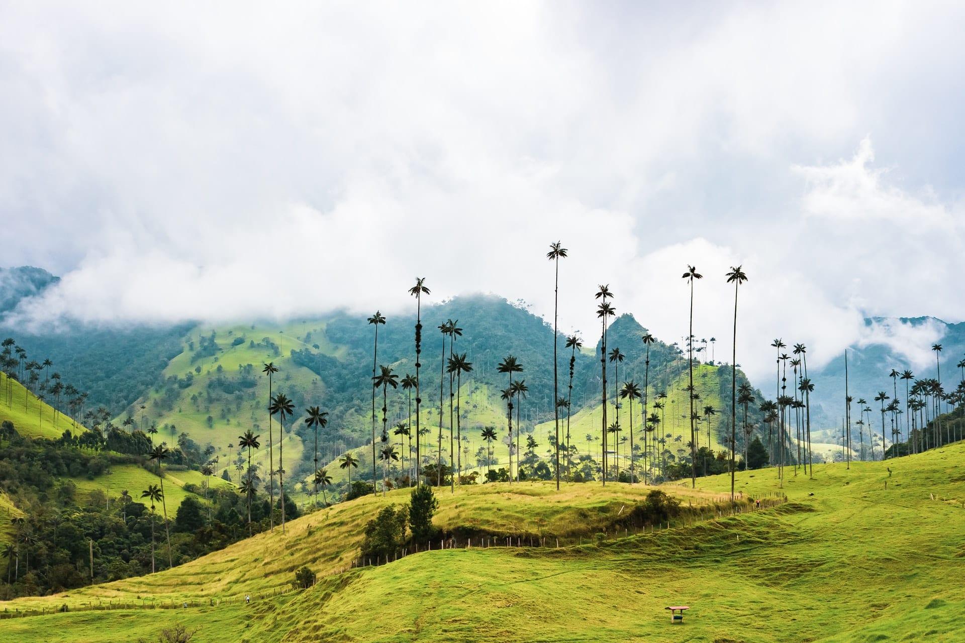 colombia-hillside