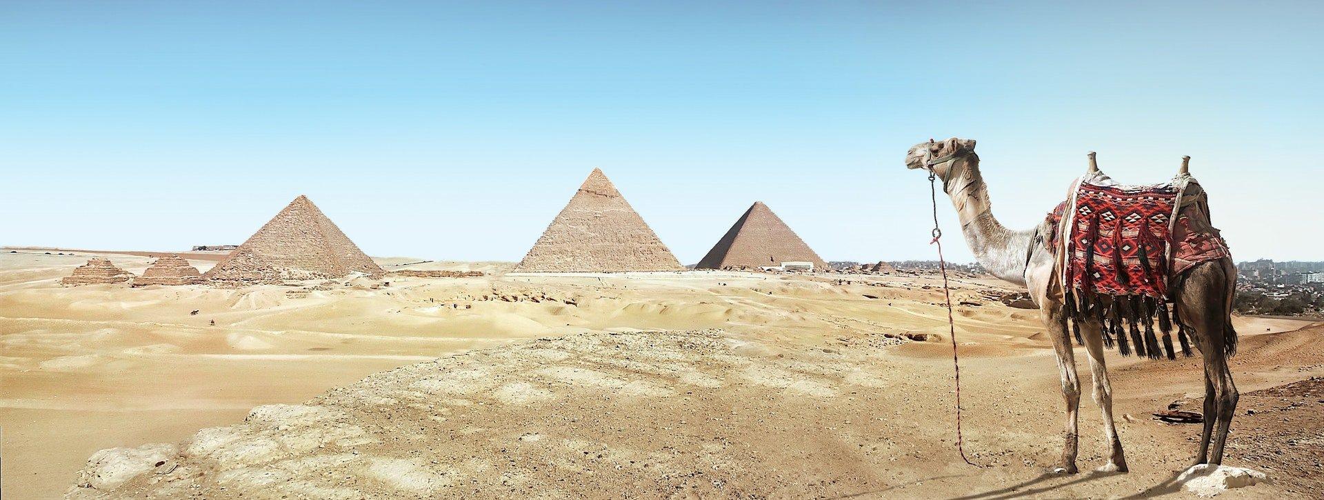 pyramid-camel-egypt